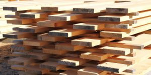 Alternatives to radiata pine 2